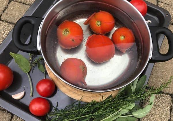 Spaření rajčat v horké vodě