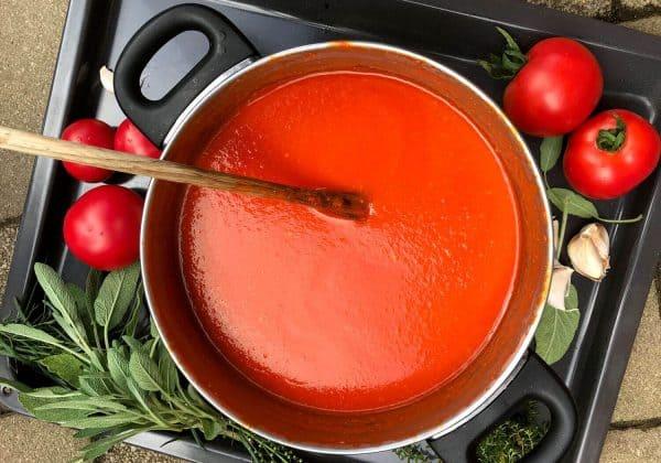 Rajská omáčka z čerstvých rajčat